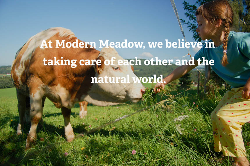 so-catchy-cruelty-free-vegan-fashion-modern-meadow